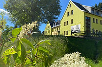 Berghotel-Talblick-Holzhau-06.2020-Holunderblüte.-2.jpeg