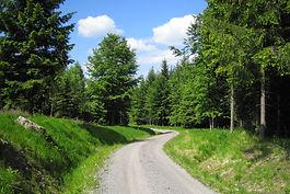 Wander-u. Radweg nach Seiffen.jpg