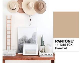 Avelã - Hazelnut Pantone