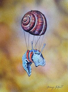 Escargot volant 4
