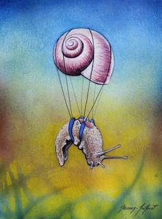 Escargot volant 3