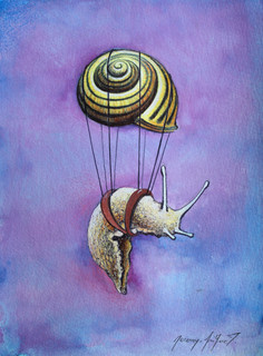 Escargot volant 1