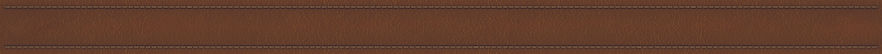 Leather Strip.jpg