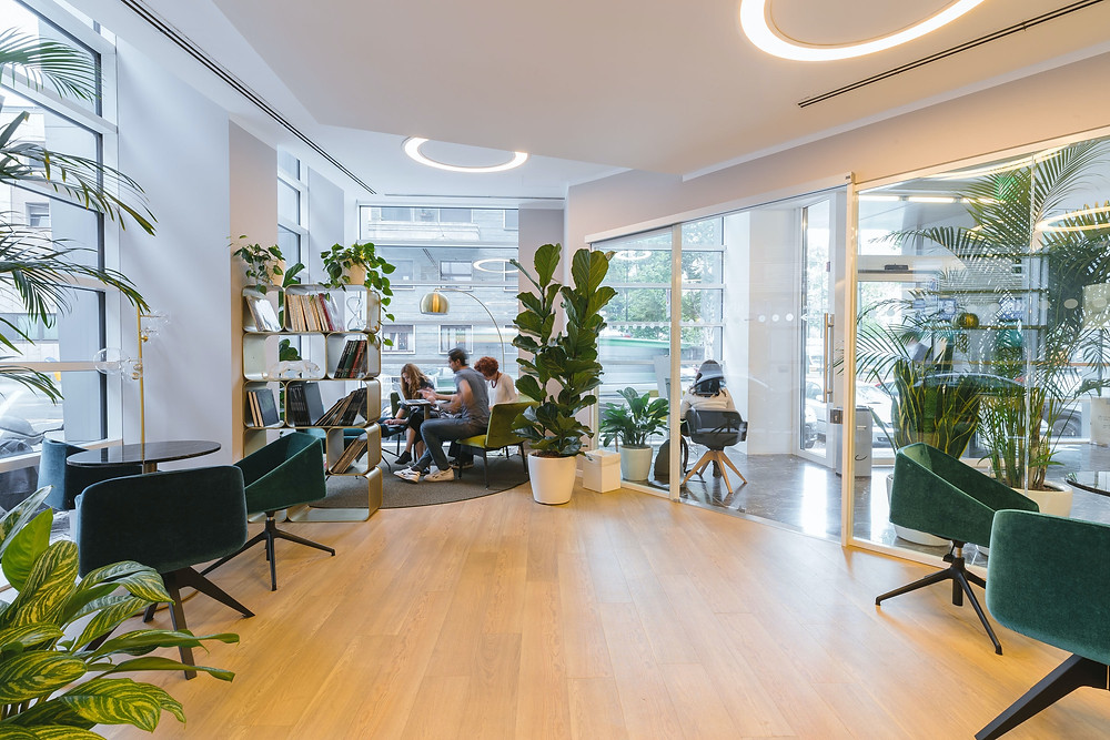 Breakroom with plants