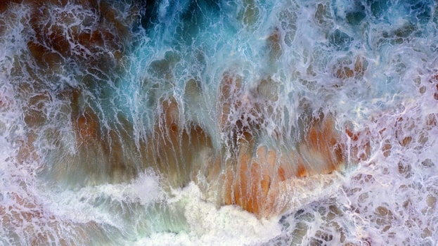 Wayne Quilliam 2020 22 Art photography-