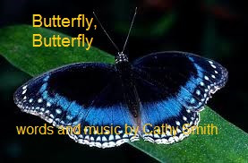 New video for 'Butterfly, Butterfly'