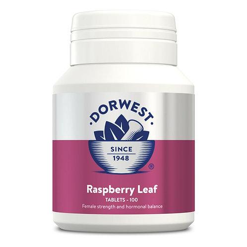 Raspberry Leaf Tablets