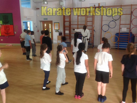 Book Karate Workshops for Primary and Secondary Schools | Red Panda Workshops