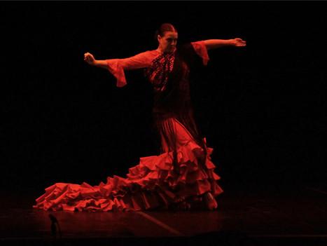Book Flamenco Dance Workshops for Schools - Primary School - Secondary School