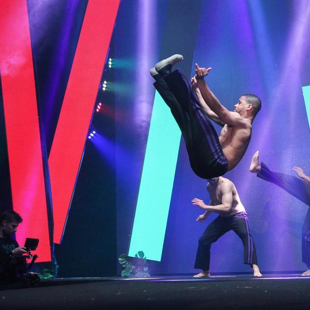 Capoeira shows
