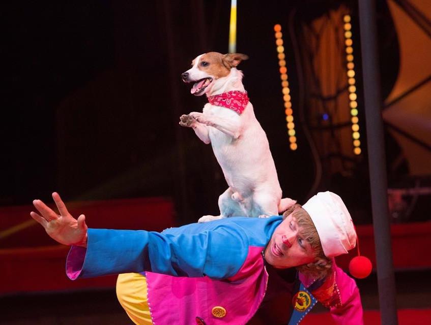 Russian circus act