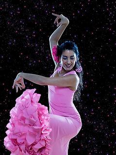 Flamenco dancers hire