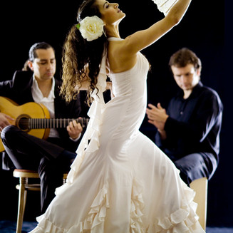 Flamenco dancers for hire