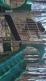 Pit Slide