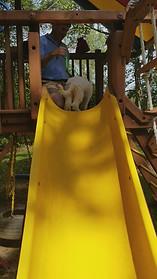 Slide Training Caroline