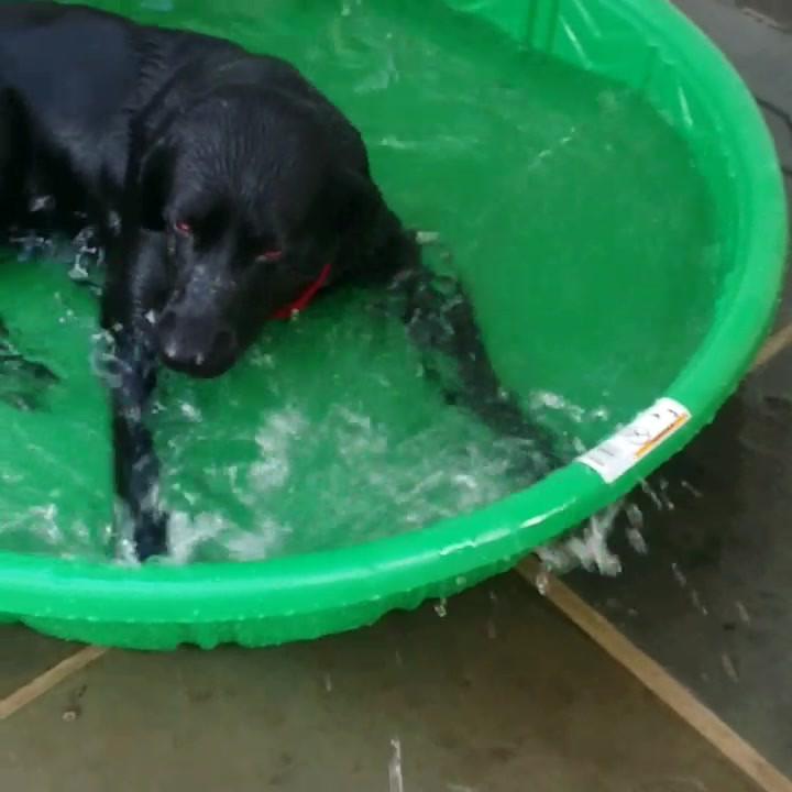 Need a bigger pool