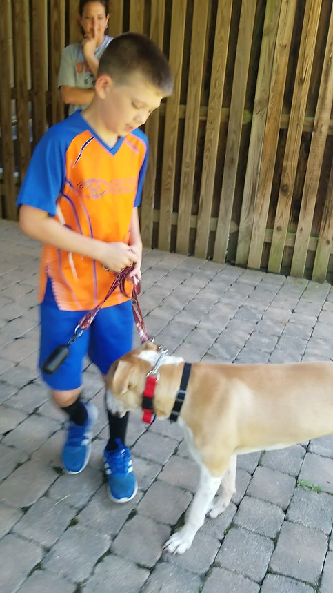 Walking Leroy