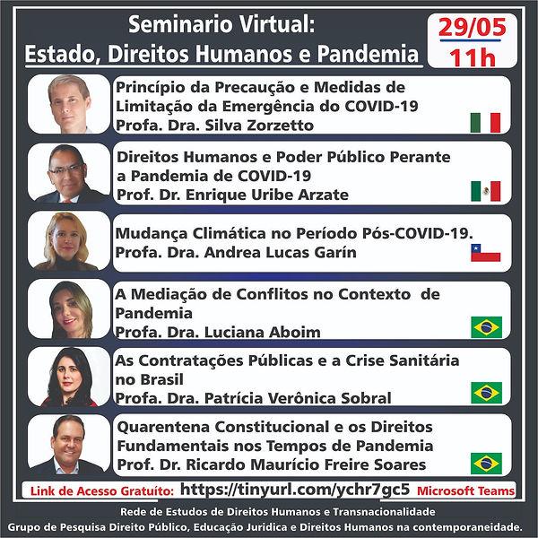 Seminário_Virtual.jpg