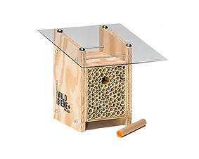 Bee Home Ausschnitt.jpg