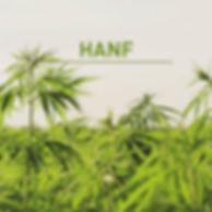 Naturmatratze, Hanf, Hanfmatratze, Schweiz, Bern, Zürich, Luzern, Solothurn