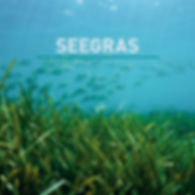 Seegras-Matratze, Matratze, Seegras, NaturPur, dormiente, Schweiz
