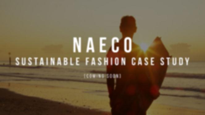 Naeco copy.jpg
