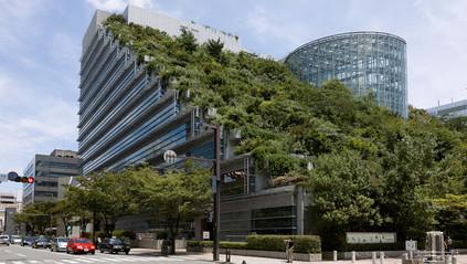As vantagens imobiliárias da construção sustentável