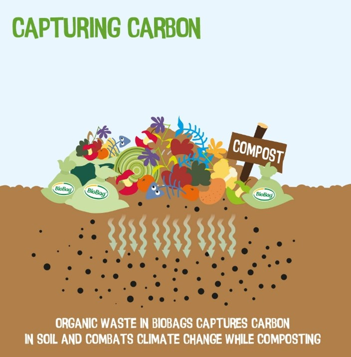 Composting benefits for carbon