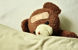 teddy-3183563_1920.jpg