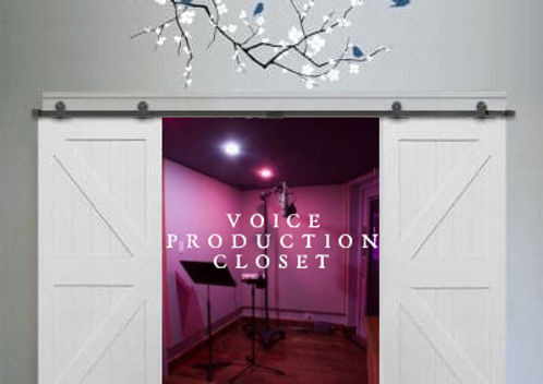 VOICE PRODUCTION STUDIO.jpg