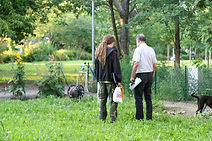 nino Permakultur, Permakultur, Permaculture, Berlin, Permakultur Berlin, Permaculture Principles