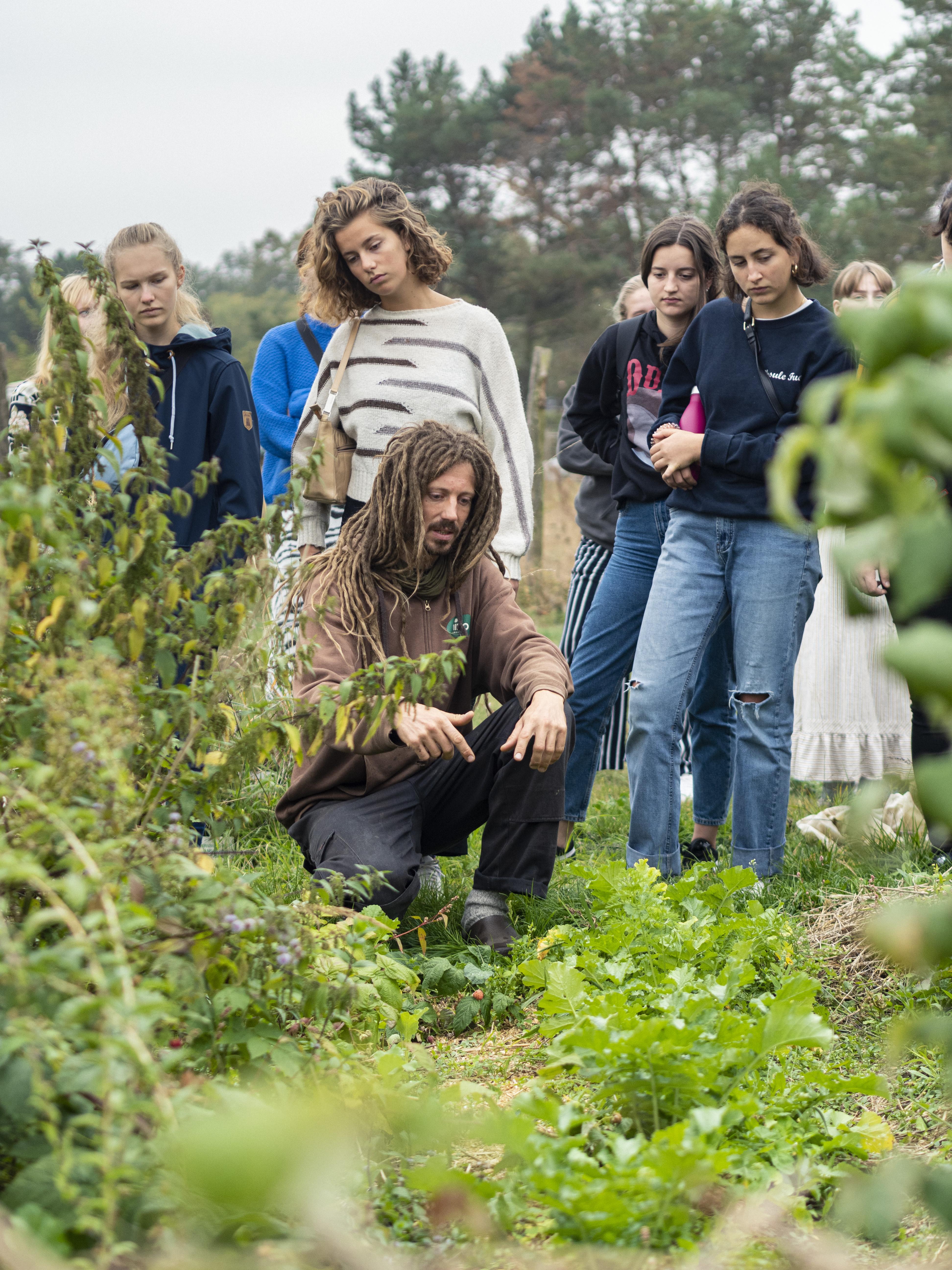 Erläuterungen am Gemüsebeet