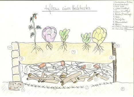 nino permakultur berlin hochbeet