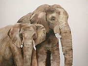 elephants_edited.jpg