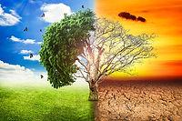 משבר האקלים: נקודת האל החזור