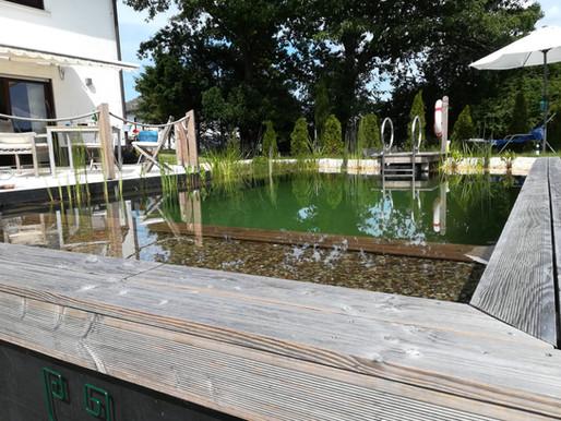 Tauchen Sie jetzt in Ihren Schwimmteich ein! Werner Gartengestaltung realisiert ihre Träume