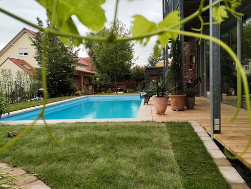Pool oder Schwimmteich?
