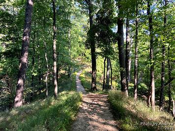 2020-08-22 - PTH Hike - Cootes & McMaste