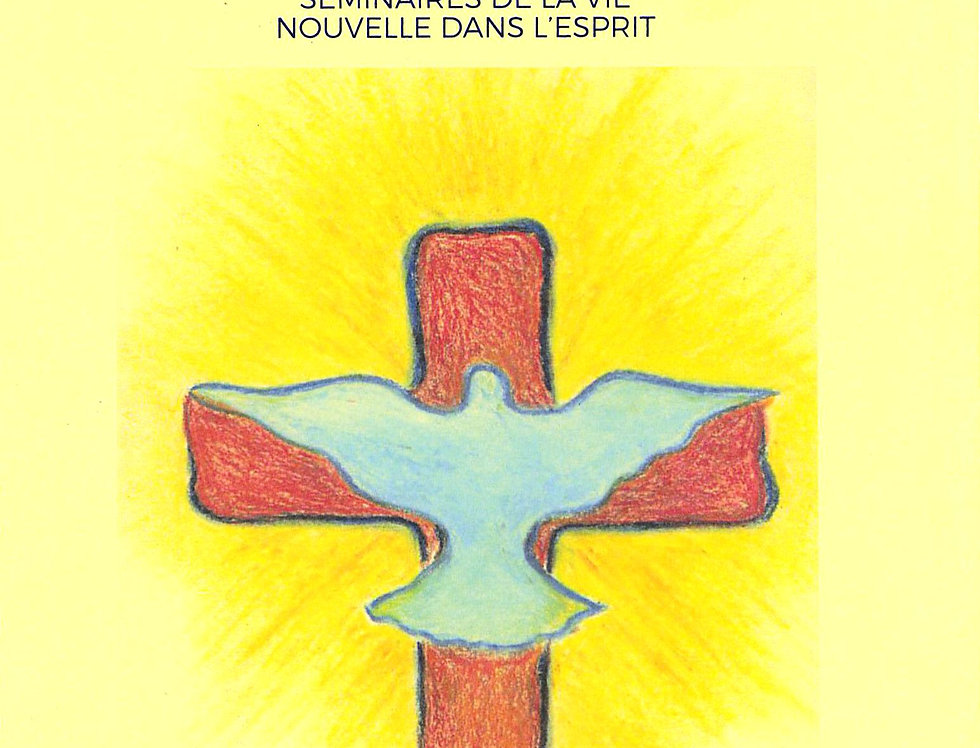 Vers une vie nouvelle dans le feu de l'Esprit (manuel des animateurs)