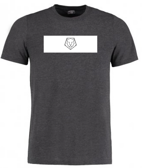 Dark Grey Box T-shirt