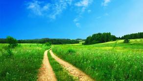 Andar Nuevos Caminos en 2021!