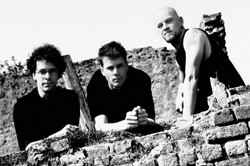 Thelema Trio