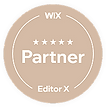 Wix_website_designer