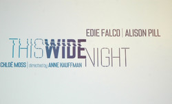 This Wide Night