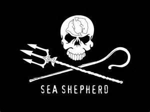 seashepherd.jpg