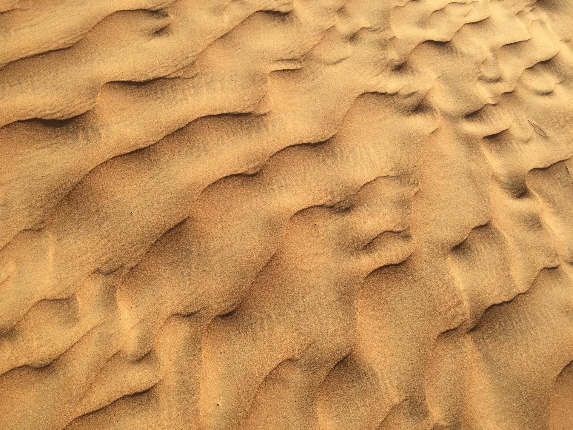 Sahara Desert, Kingdom of Saudi Arabia