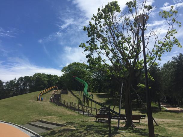 札幌市 月寒公園