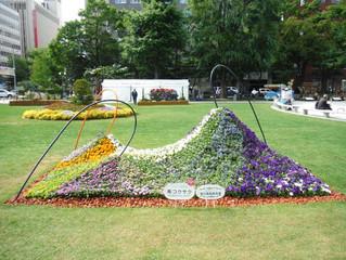 第63回札幌市大通花壇コンクールに出展しました。