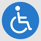 logo handicap 2.jpg