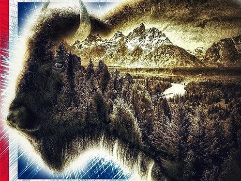 Spirit of Wyoming